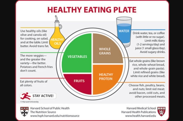 HealthyPlate_9.9.11