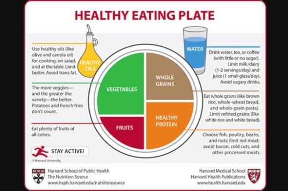 HealthyPlate_9.9.11